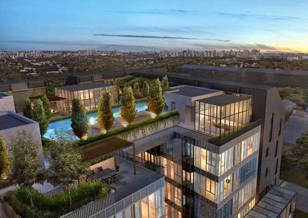 Roof-Terraces