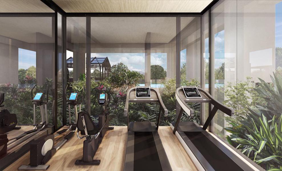 Olloi-gym