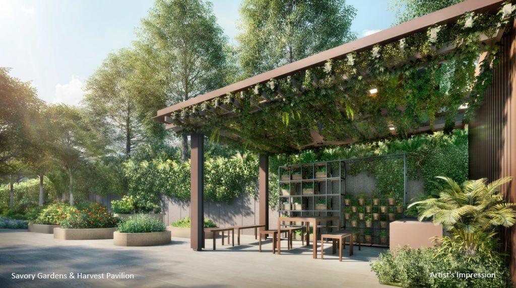 The Watergardens Savory garden